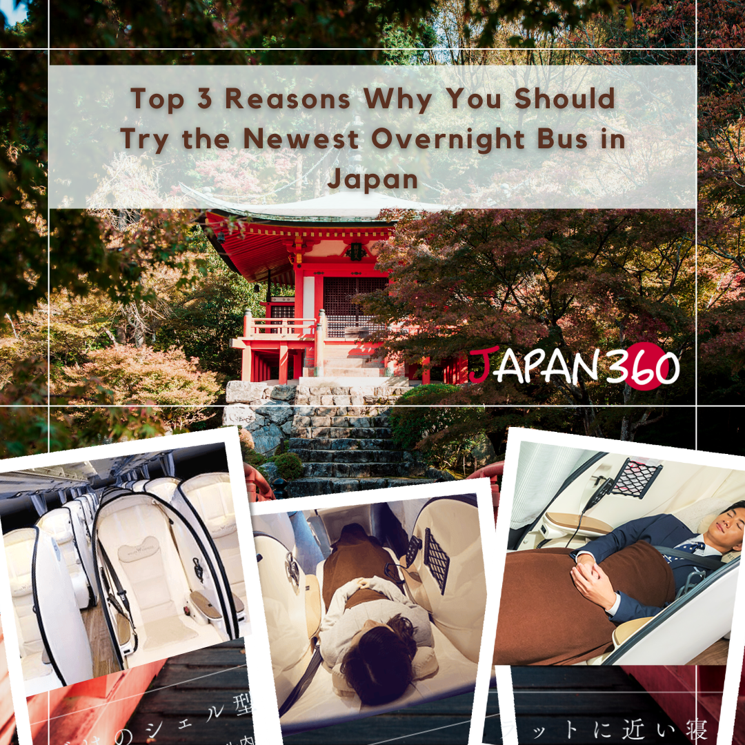 overnight bus cover image